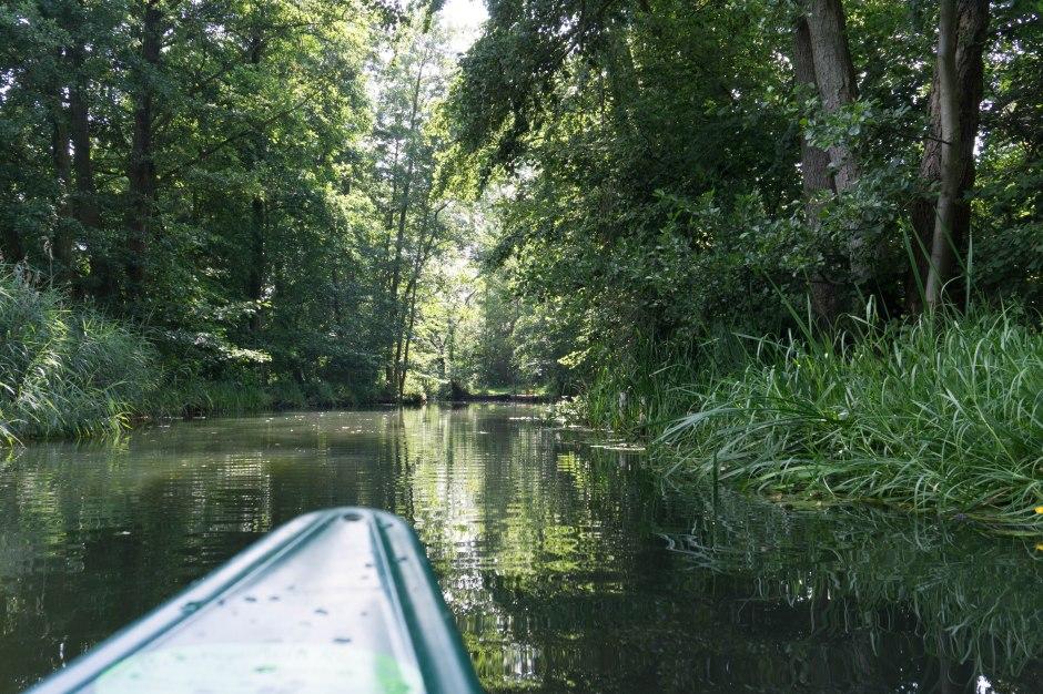 Kanu Spreewald